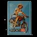 Postal Metalica Ducati 60