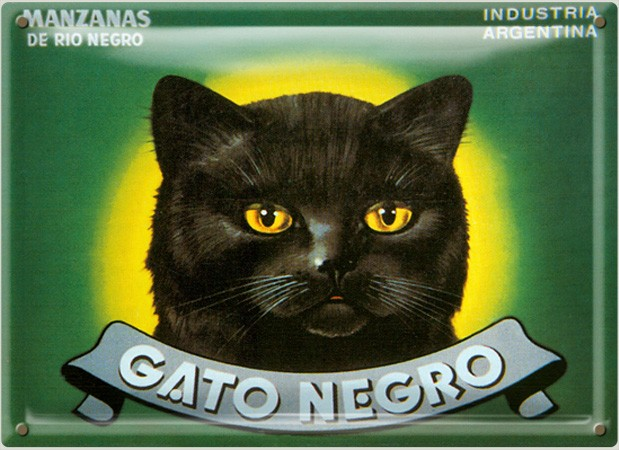 Postal Metálica Gato Negro
