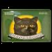 Cartel Metálico Gato Negro