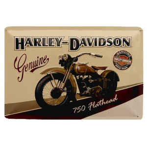 Genuine Harley Davidson